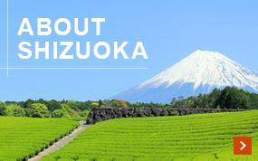 About Shizuoka